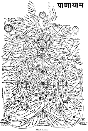 Ancient nadi chart representing the flow of prana - the essence of vata dosha.